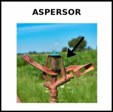 ASPERSOR - Foto