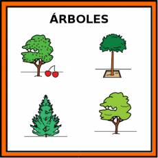 ÁRBOLES - Pictograma (color)