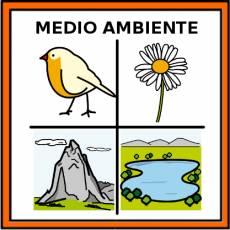 MEDIO AMBIENTE - Pictograma (color)
