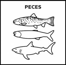 PECES - Pictograma (blanco y negro)