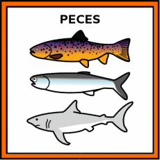 PECES - Pictograma (color)