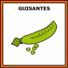GUISANTES - Pictograma (color)