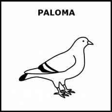 PALOMA - Pictograma (blanco y negro)