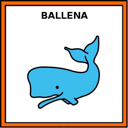 BALLENA | EducaSAAC